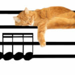 Tote bag picture of cat lying on sheet of music