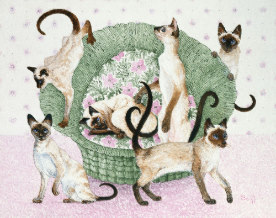 Drawing of 6 Siamese