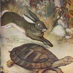 tortoise and hare racing, tortoise ahead