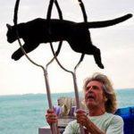 Cat jumping thru 2 hoops