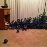cat next to knocked-over Christmas tree