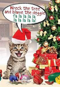 Cat in Santa hat singing song