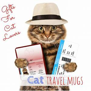 cat ready for travel with hat, tickets