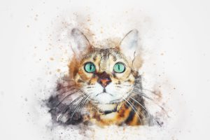 Drawing of orange tiger cat, head and shoulders