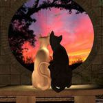 2 cats looking out round window at sunset