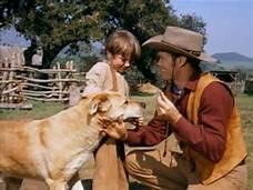 Cowboy talking to boy and dog