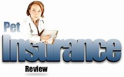 Pic of vet; insurance review sign
