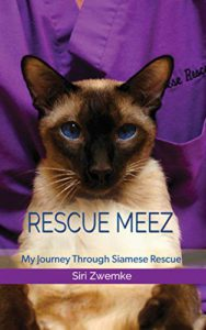 Siamese sitting; rescue meez caption