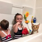 Children and cat in tub
