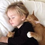 child and orange cat sleeping