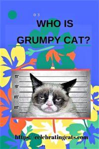 Pic of Grumpy Cat + pinterest pin