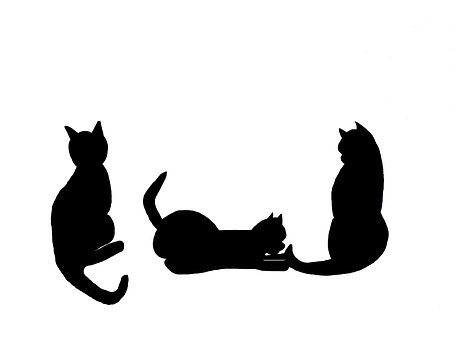 silhouette of black cats
