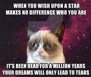 Grumpy cat with grumpy saying