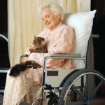lady in wheelchair with cat