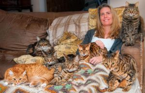Deb Barnes and 7 cats