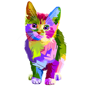 many-colored cat drawing