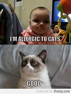 Baby: I'm allergic to cats; Grumpy Cat: Good
