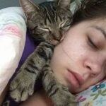 cat sleeping with person
