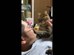 Cat touching man's face in bed