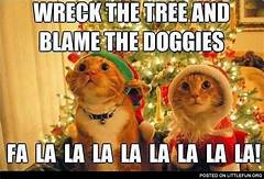 "Two cats singing ""wreck the tree and blame the doggies"""