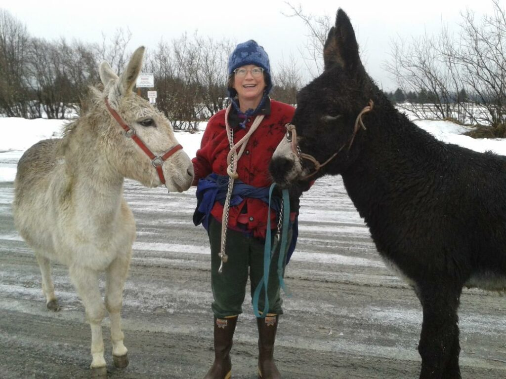 Kate and two donkeys