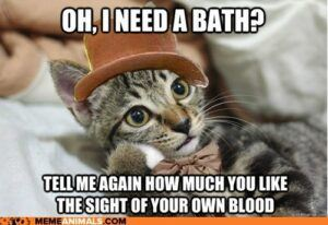 Oh, I need a bath? Tell me again how much you like the sight of your own blood