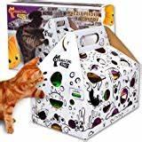 cat playing box game