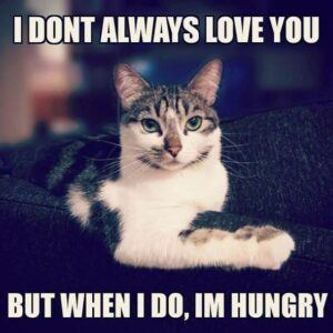 I don't always love you, but when I do, I'm hungry