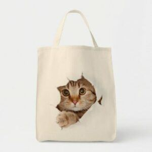 Cat looking out hole in tote bag
