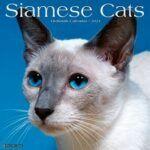 2021 calendar -- Siamese cat head