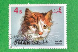 Van cat on postage stamp