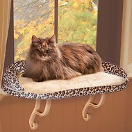 Cat sitting on window perch
