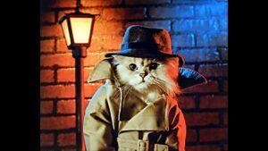 Cat dressed in detective attire