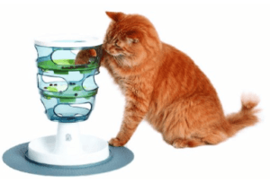 Orange cat getting food from puzzle