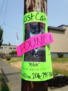 "Post advertising lost cat; says ""found"""
