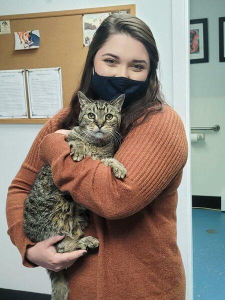 Woman holding grey tiger cat