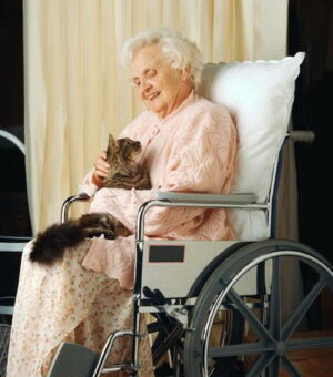 Elderly woman in wheel chair holding cat