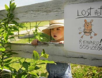 child + sign about lost pet