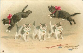 drawing: 2 black cats jumping over 3 kittens standing in line