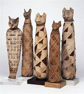 Egyptian mummified cats
