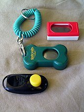 Examples of clickers for cats