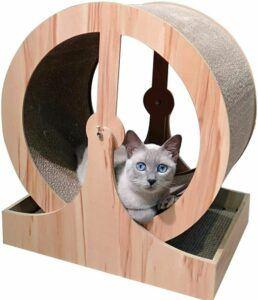 RSTJ-Sjef Cat Exercise Wheel