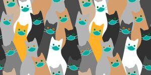 cartoon drawing: many cats wearing masks