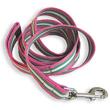 coiled up leash, pink with green & white stripes