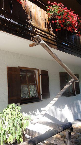 Cat ladder to second floor